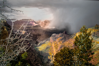 Grand Canyon Snow Shower