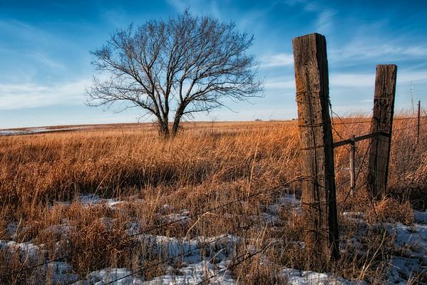 A little spot of beauty in Kansas