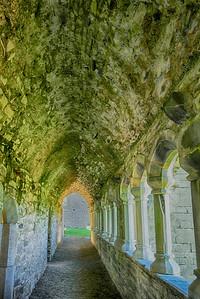 Ardfert Friary Passageway