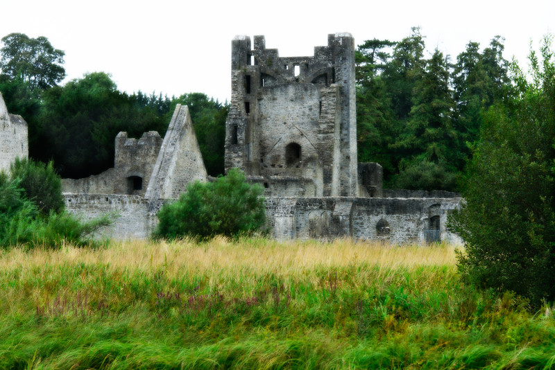 Castle Ruins near Adare, Ireland