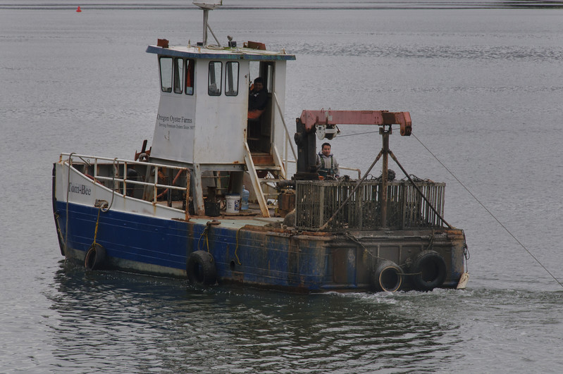Yaquina Bay Oysterman
