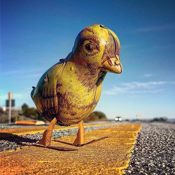 """""""I dream of a day when I can cross the road without having my motives questioned"""" — Chick"""