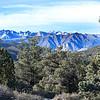 White Mountains View ~ California ~ Winter