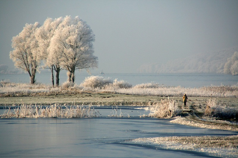 """Frosty Walk"" (#8702)"