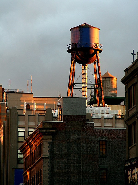 """NYC Water Towers"" (13.5""x18"" #4798) $97"