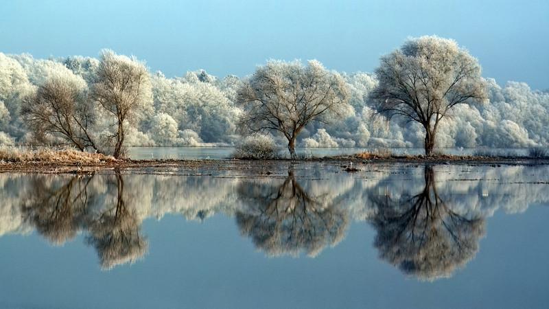 """""""Elbe Frost"""" (20""""x36"""" #8699) $288"""