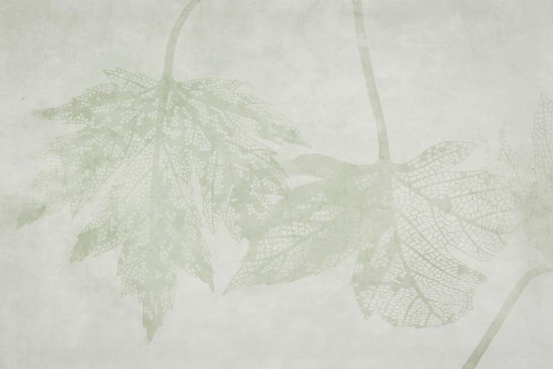 LeavesGreen