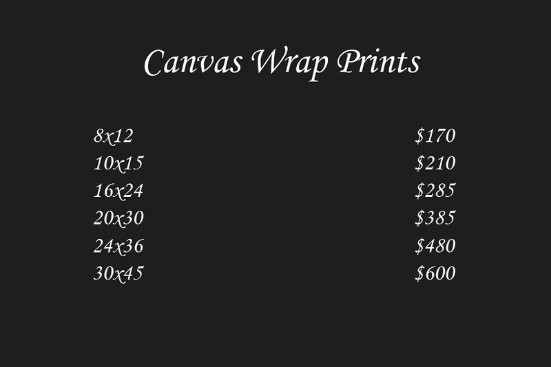"<div class=""myDescriptionText"">Canvas Wrap prints are a stylish, low-cost alternative to traditional framing. The print is wrapped around a stretcher frame so that 1 1/2"" of the photo's edges are visible on the sides of the frame. They're delivered display-ready with hanging hardware attached.   * <a href=""http://www.smugmug.com/prints/giclee-canvas-watercolor""target=""_blank""><b>Click here to learn more about Canvas Prints</b></a></div>"