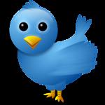 twitter bird-1676908550-O