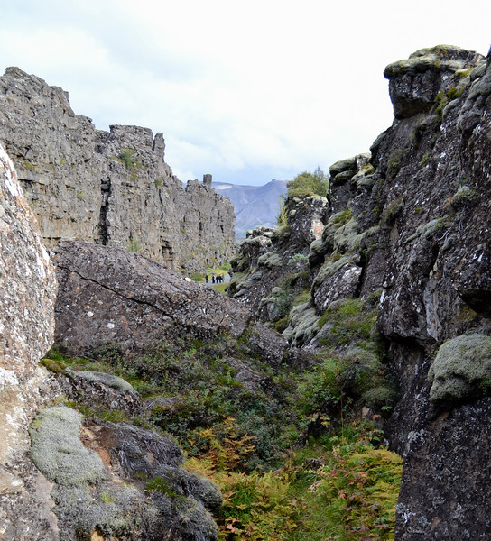 This valley at Þingvellir National Park is widening a little bit each year as the North American and Eurasian plates pull apart from each other.