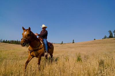 Cowboy riding the range in Princeton