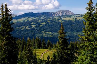 Hiking 83, Paintbrush Trail, Cascade Recreation Area, Manning Provincial Park, Similkameen, summer, landscape, Darren Robinson