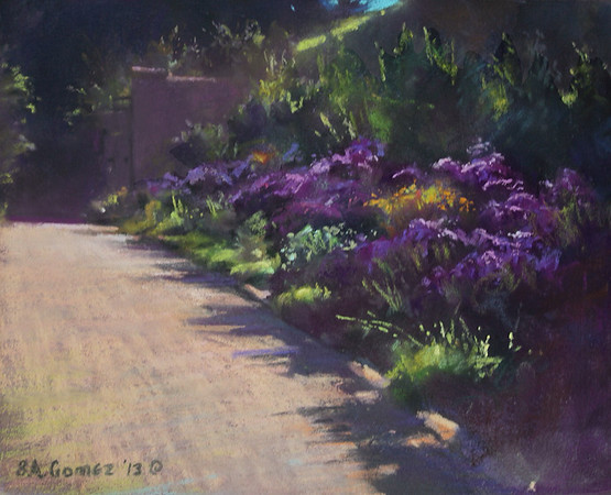Asters, Late Afternoon