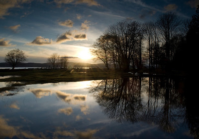 Flooded farm, Powell River, BC