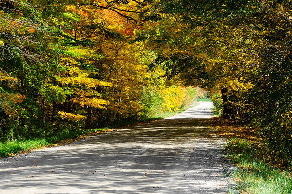 autumn roads...