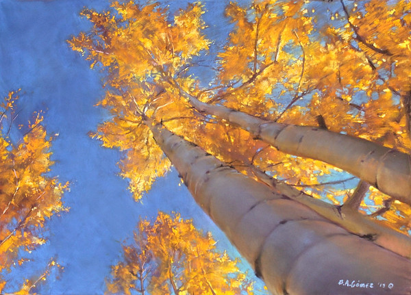 Overhead Aspens, Far Away