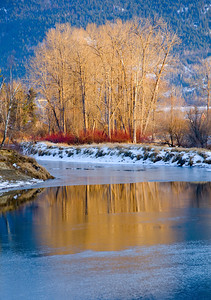 Shuswap River, Enderby, BC
