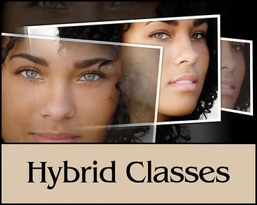 HP hybrid class