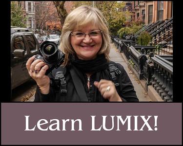 HP Learn Lumix