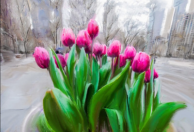 TulipsInNYC-finally spring