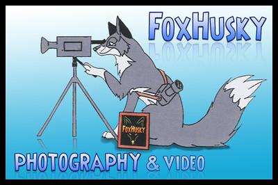 Oude FoxHusky banner