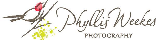 PhWks_Logo4C_Horiz_FA