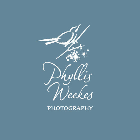 PhWks_LogoBlk_Horiz_FA