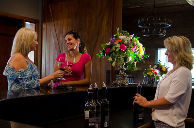 Vanessa Vineyard & Winery 7, Cawston, Similkameen, summer, activities, Darren Robinson