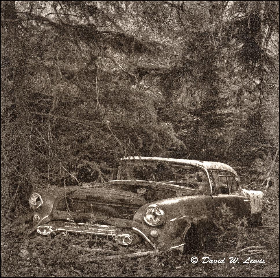 88 Oldsmobile, Condon, Montana