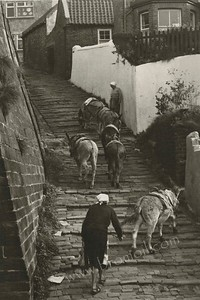 Old Steps Whitby 1981 Gelabrome Print