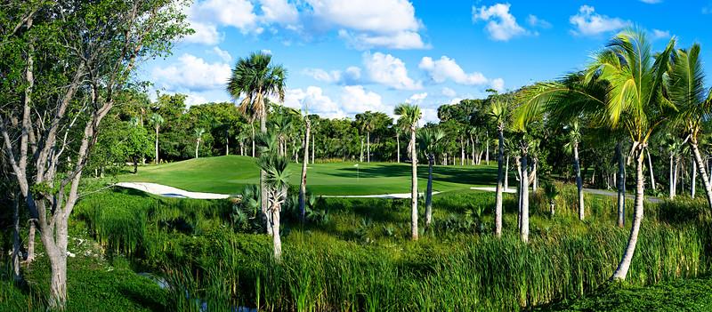 Bavaro Golf Club