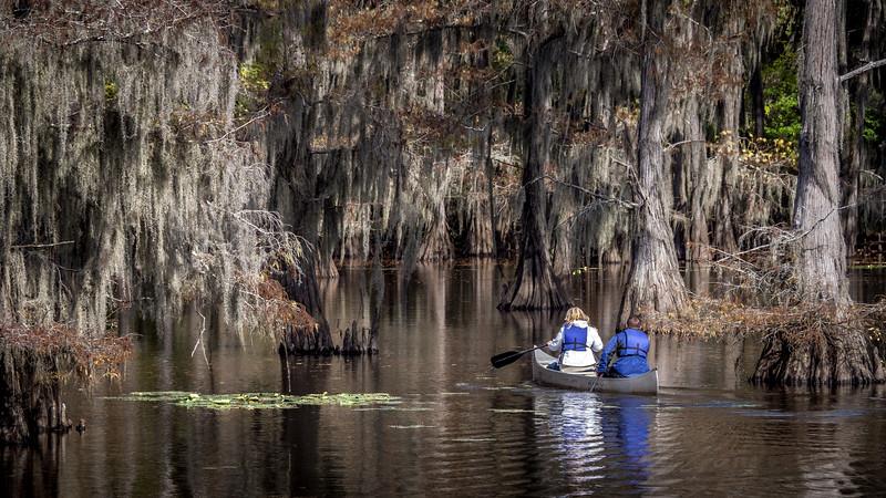 Canoe on Caddo Lake