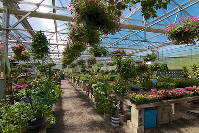 Greenhouse Int Landscape