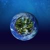 Earth Animals