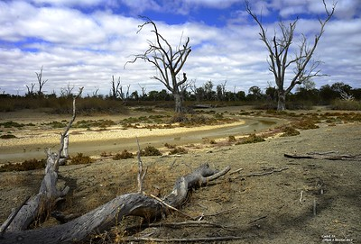 Cadell, River Murray, South Australia