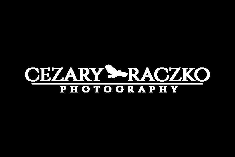 cr-logo-cmyk-04