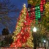 Travis Park Christmas Tree
