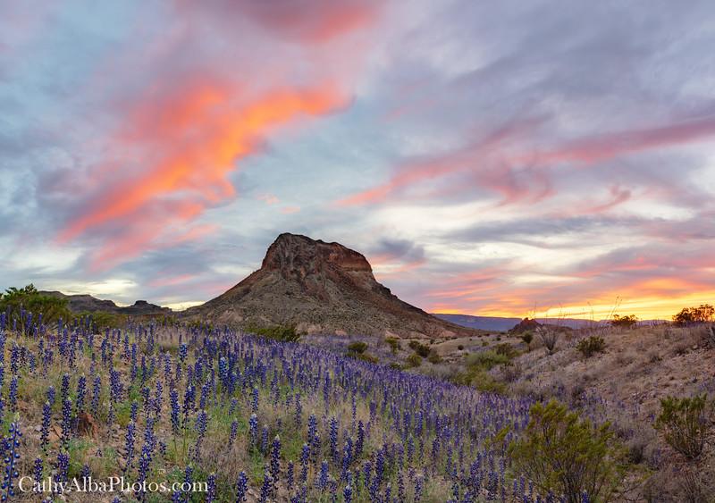 Sunset above Cerro Castellan