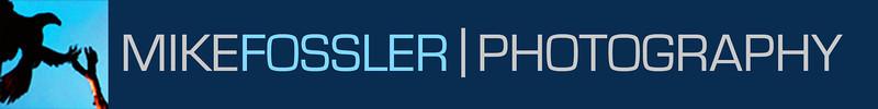 MF Header - New