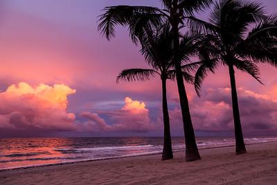 Beach Sunset web