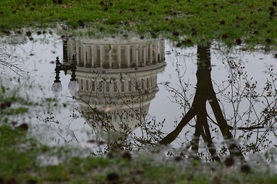 U.S. Capitol reflected in puddle