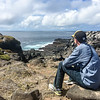 Contemplating the Galapagos