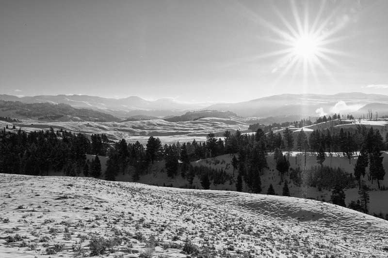 Sun Star Landscape