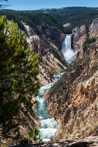 Lower Falls and Gorge, Yellowstone, WY
