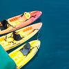 Kayak Anyone?
