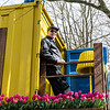 Joe at Keukenhoff, NL