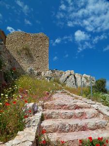 Castle Steps