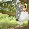 The bride and groom sit in a tree