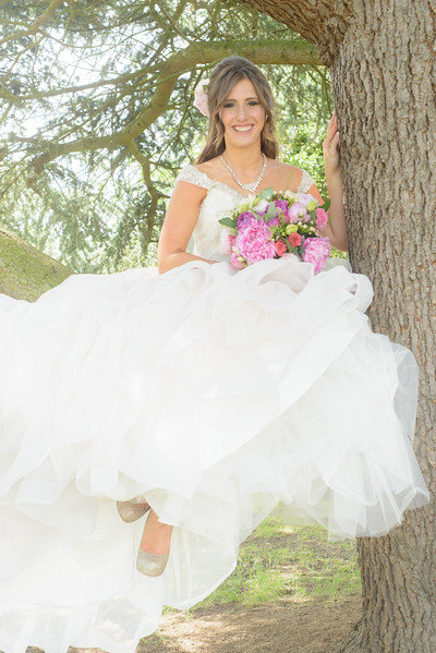 The bride sits in a tree