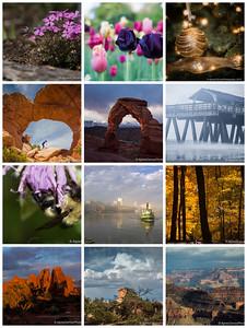 Flickr Favorites 2015
